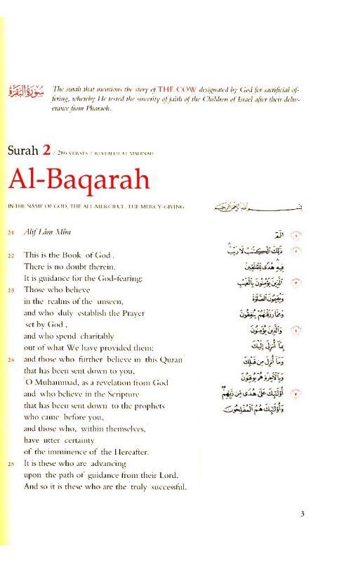 al qur an a contemporary translation pdf