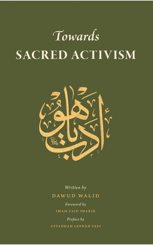 Image result for towards sacred activism dawud walid