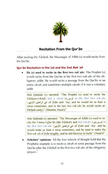 Performing Salah Using the Prophetic Example - Summary Edition